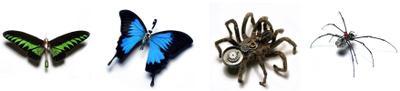 Butterfly1_1